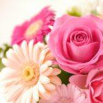 母の日に贈る花にもこだわろう!おすすめのフラワーギフトも5つ紹介!