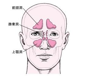 小林麻央 顎